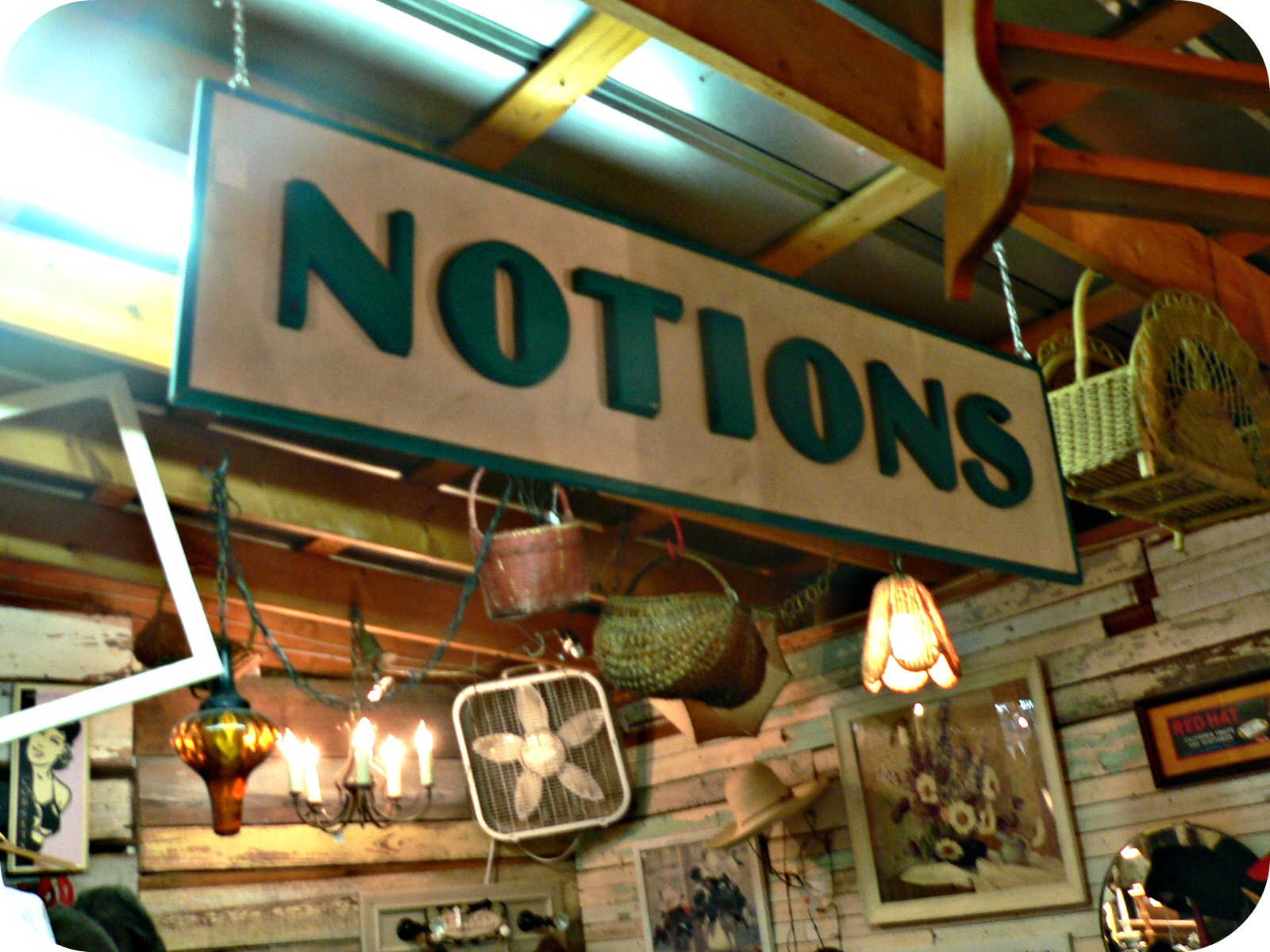 notions Thrifting in Raleigh