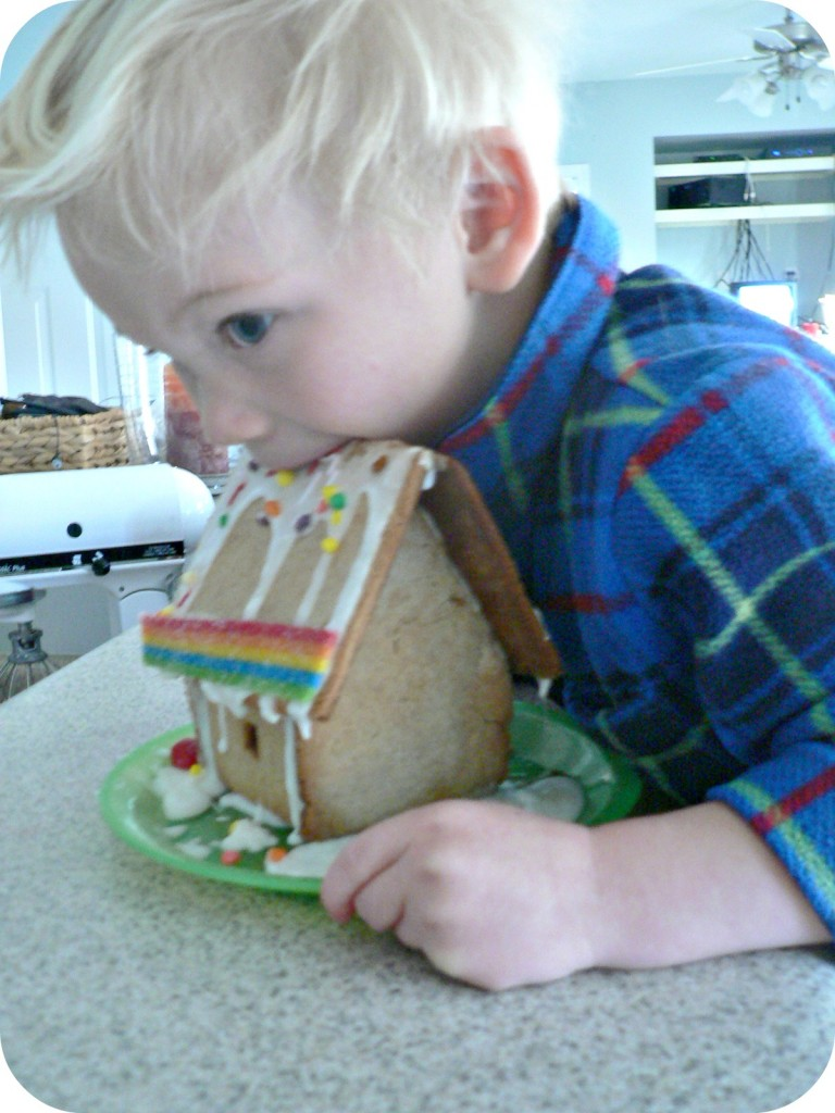 samgingerbread 768x1024 Ginger Bread House Kit