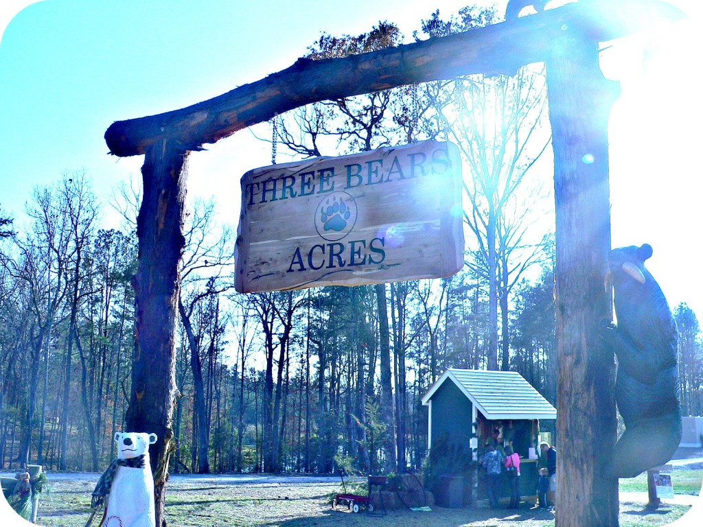 threebearacressign 1024x768 Three Bears Acres, Creedmoor NC